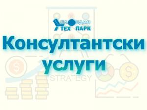 Консултантски услуги Пловдив Тех Парк